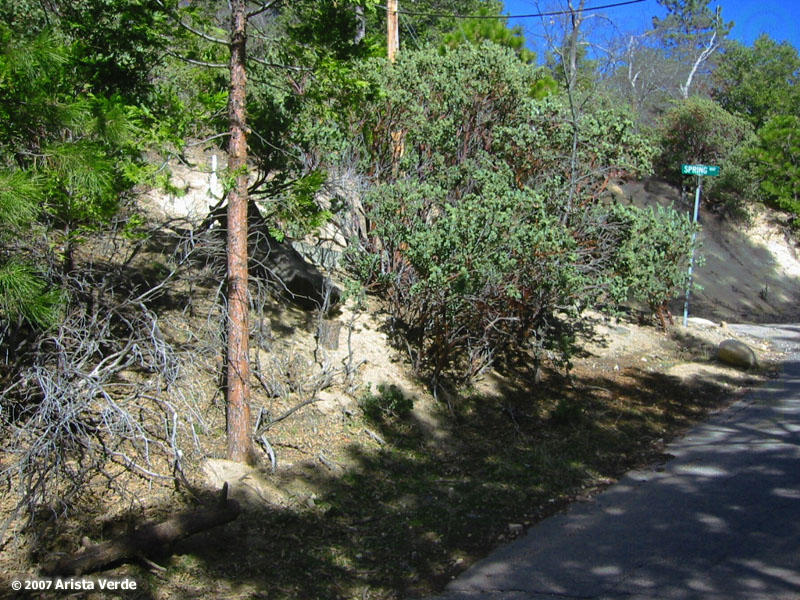 lake arrowhead mature singles Page 2 | single family homes for sale in lake arrowhead, ca last 66 days on market find your dream home at realtorcom® before it's gone.